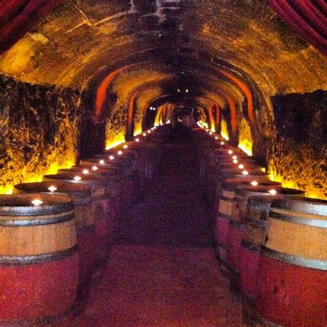 Dotto Caves Winery Tasting Room by 17 Best Images About Napa Wine On Vineyard