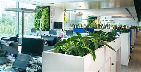 Your Office Greener by 7 Ways To Make Your Office Environmentally Friendly Aw2k