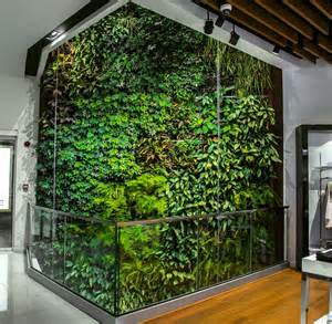 Creer Un Mur Vegetal Exterieur