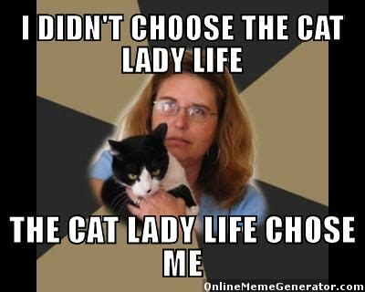 Dog Lady Meme - best 25 crazy cat lady meme ideas on pinterest crazy