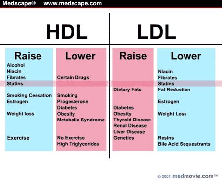 how to reduce substance p naturally search results review value raise hdl lower ldl healthy about food pinterest