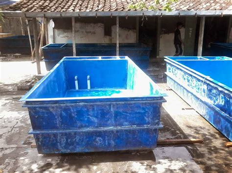 Bak Sortir Lele Di Surabaya kolam fiber murah kolam fiber ikan lele koi