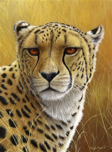 free animal painting 420 best images about quot quot quot animal pencil drawings quot quot quot on