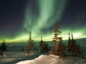 Christmas Tree Lights Melbourne - the northern lights churchill manitoba canada