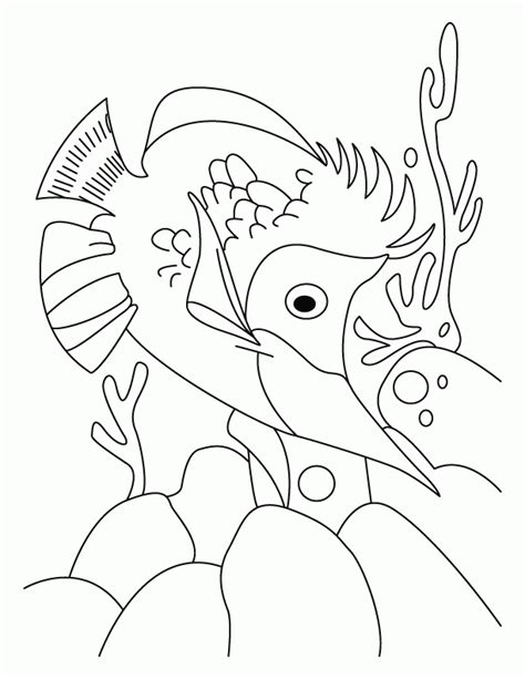 coloring page one fish two fish dr seuss coloring pages one fish two fish coloring home