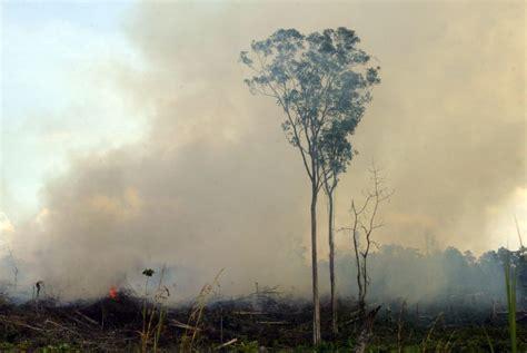 kebakaran hutan  riau mencapai  hektare