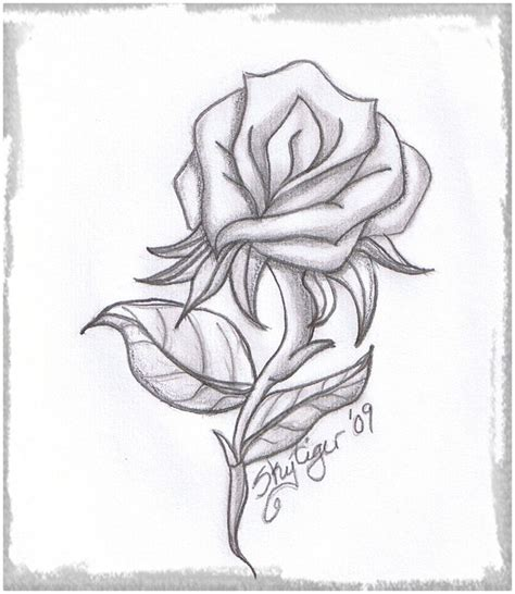 imagenes de una rosa para dibujar faciles imagenes de rosas de amor para dibujar a lapiz archivos