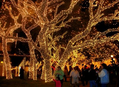 san marcos lights where to see lights san antonio san marcos