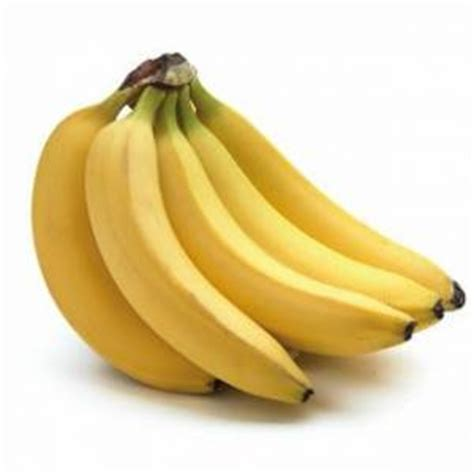 can dogs bananas can dogs eat bananas pet health