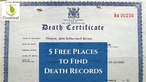Free Search For Birth Records 25 Best Ideas About Certificate On