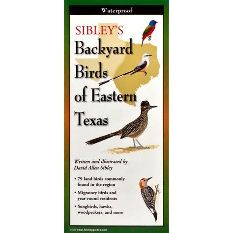 backyard birds of texas sibley s backyard birds of eastern texas earth sky water