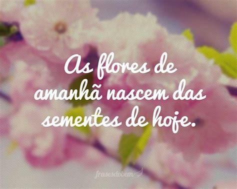 frases de rosas frasesypensamientoscomar as flores de amanh 227 nascem das sementes de hoje