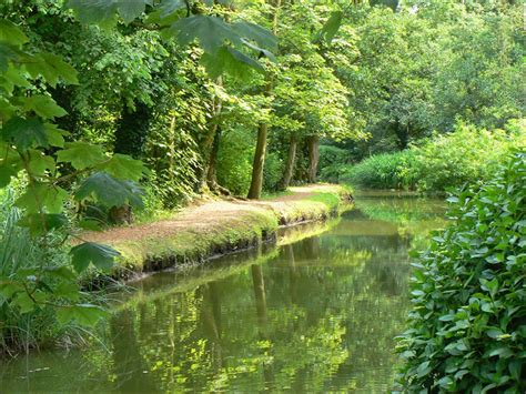 Fairhaven Garden by Fairhaven Woodland And Water Gardens Norfolk Broads