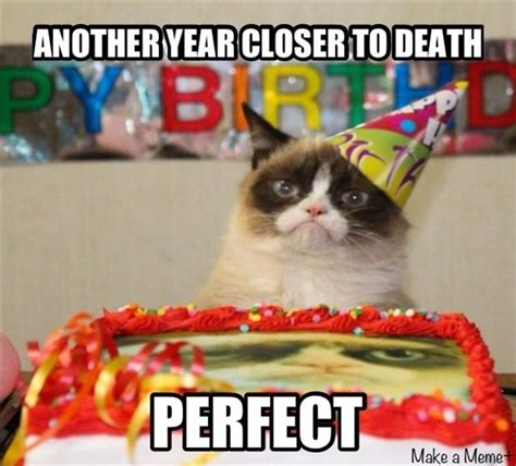 Grumpy Cat Happy Birthday Meme - funny cat birthday cards