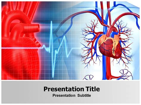 cardiovascular powerpoint template free cardiovascular with blue and powerpoint templates