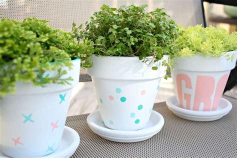 vasi di cotto vasi in cotto vasi tipologie di vasi in cotto