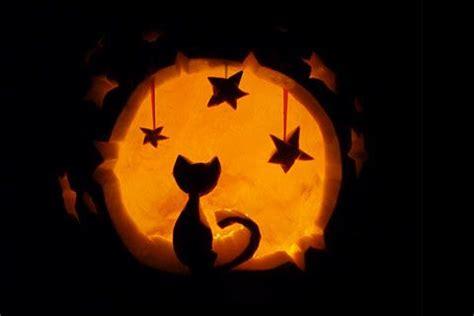 ideas  cat pumpkin carving  pinterest