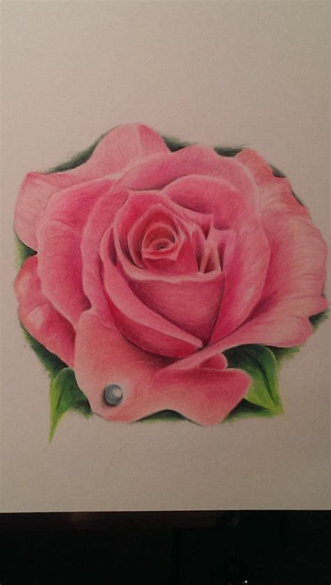 realistic rose tattoo designs 1000 ideas about pink tattoos on