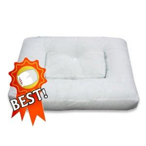 Anti Snoring Pillow Reviews by Snorestop Pillow Review At Ebay Pillow Reviews Pillow