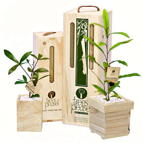 nz trees please tree gifts ecofind