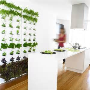 Kitchen Garden Living Wall Indoor Herb Gardens And Salad Walls Inspiration