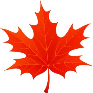 google images fall leaves 3d autumn maple leaves android apps on google play