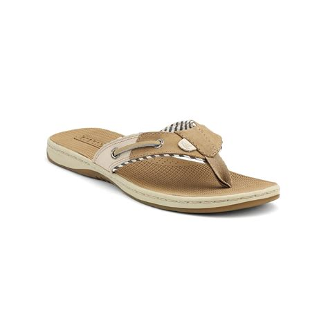 sperry top sider sandals womens sperry top sider sperry s seafish sandals in