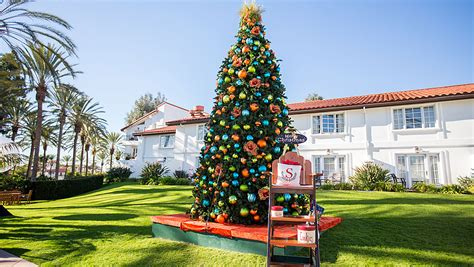 best christmas trees in san diego top activities in san diego omni la costa