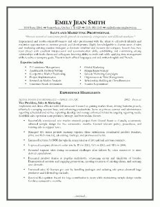 Resume Sles 2011 by Sales Executive Resume