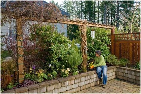 trellis along high side fence garden ideas