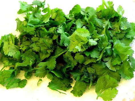 Parsley Detox Heavy Metals by Add More Parsley Cilantro To Your Diet Detox Tip 3