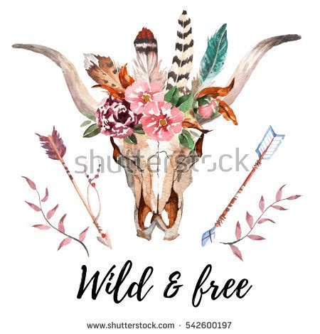 buffalo skull stock images royalty free images amp vectors