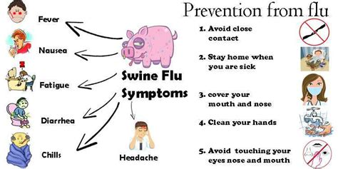 swing flu world map of deadly diseases thinglink