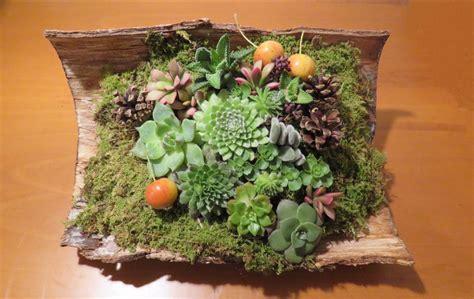 composizioni fiori recisi composizioni con fiori recisi e piante grasse armonie