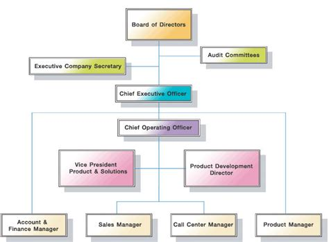 organizational chart of a limited company