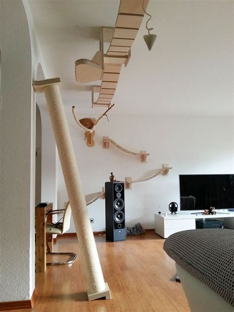 Playground Room by Rooms Turned Into Cat Playgrounds By Goldtatze