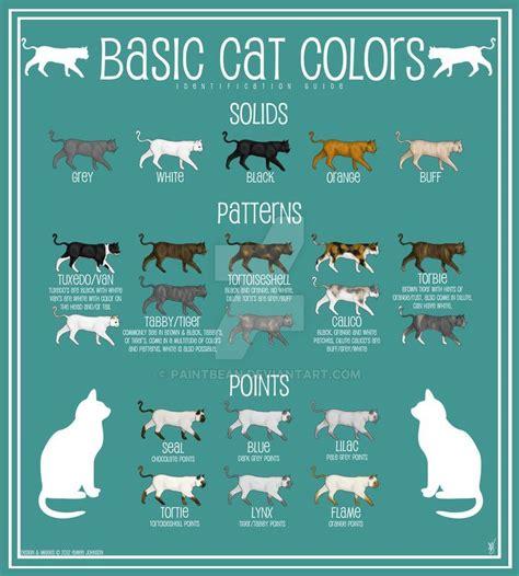 cat colors image result for cat colors cats cat colors cats cat