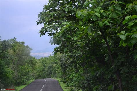 Rainforest Shoo a day trek to shoolpaneshwar wildlife sanctuary zarwani waterfalls gujarat team bhp