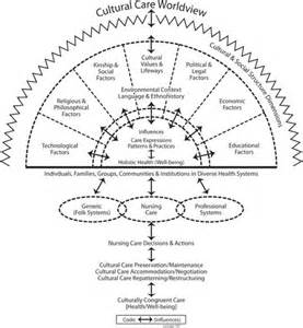 Compassionate Connected Care Model Image Gallery Leininger S Theory