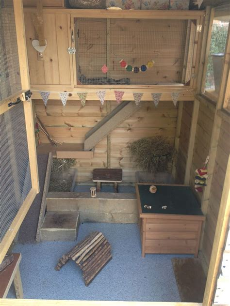 Guinea Pig Shed Ideas by The 25 Best Indoor Guinea Pig Cage Ideas On Guinea Pig Hutch Rabbit Habitat And