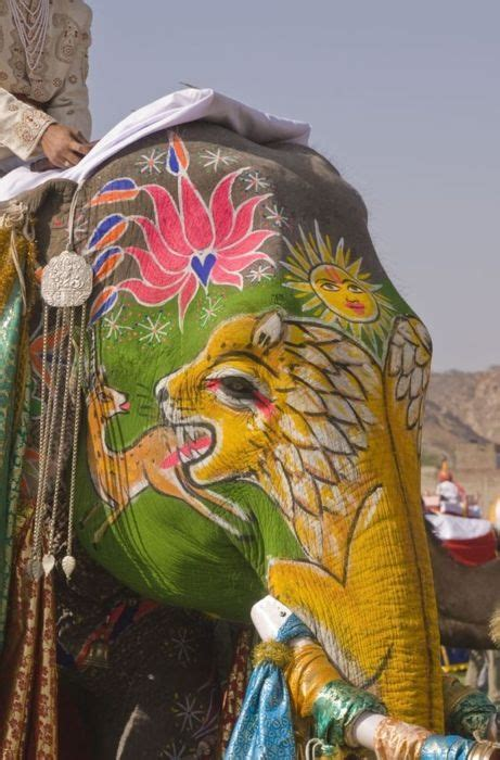 Decorated Elephants by Decorated Indian Elephant Decorated Elephants