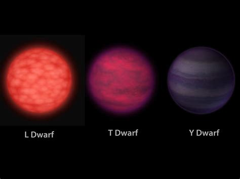 what is a sun l what kinds of dwarf star are there astroquizzical
