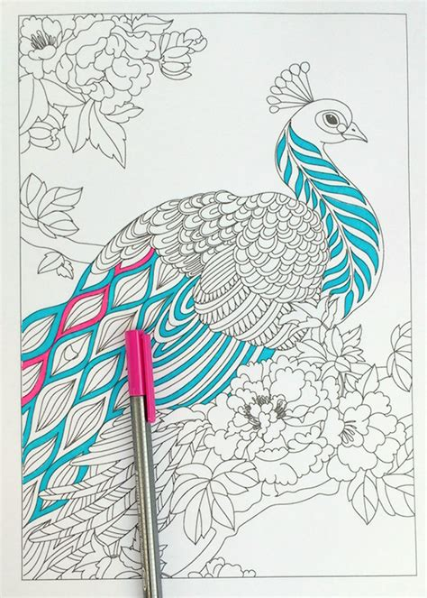 coloring pages of peacock feathers step by step coloring peacock feathers the coloring