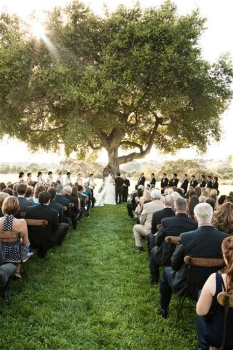 Wedding Ceremony Tree by The Tree Is There A More Symbol For Marriage