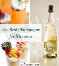 the best chagne for mimosas thewinebuyingguide com