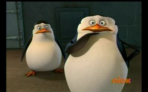 Uh Oh penguins of madagascar images uh oh what just happened hd
