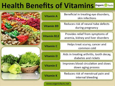 vitamin e vegetables list in tamil vitamins benefits what to take when jit4you