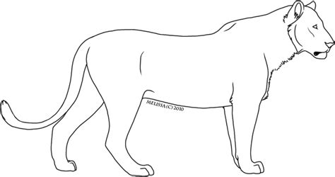 image gallery lioness outline