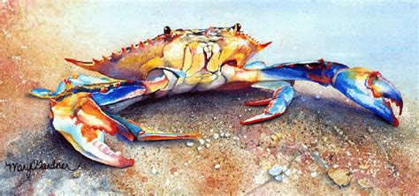 27 best images about blue crabs on pinterest crabs 27 best images about blue crabs on pinterest crabs