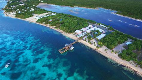 dive resorts grand cayman scuba diving in the cayman islands resorts packages